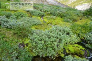 Перевал (ущелье) Рамзая